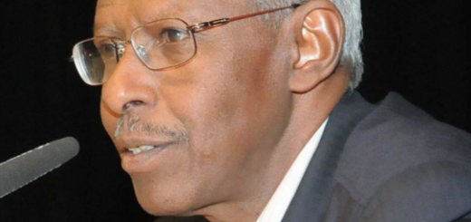 Yeman Gebreab Presidential Adviser, Eritrea